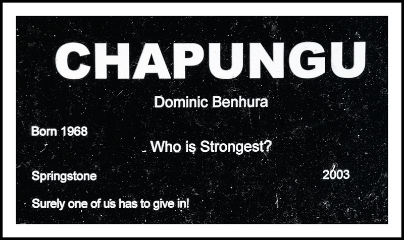 ID sign for Who is Strongest? by Dominic Benhura