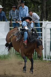 Bucking bronco cowboy