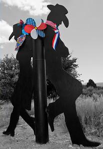 Patriotic Partners Cowboy