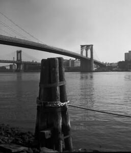 Brooklyn Bridge and Manhattan Bridge Black and White