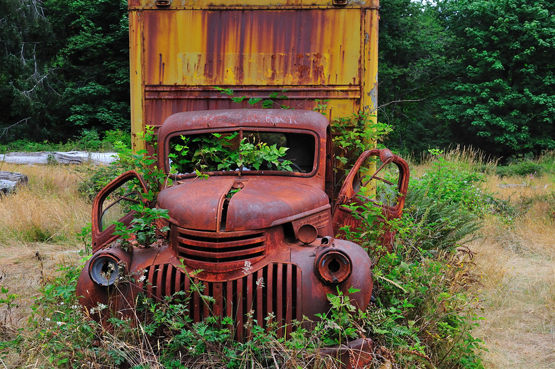 Rusting Truck in the Woods