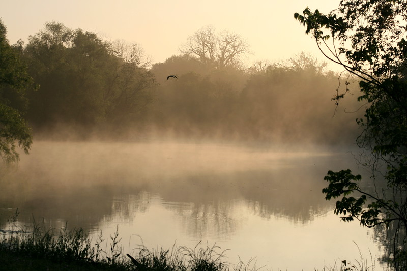 ..there is nothing like fog rolling over the water to set the mood for a morning...