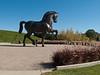 American Horse by Nina Akamu, a three piece Homage to Leonardo, bronze, 1998.<br /> <br /> 24-ft version of American Horse.<br /> <br /> DeVos Van Andel Piazza,<br /> Frederik Meijer Gardens and Sculpture Park,<br /> Grand Rapids, Michigan