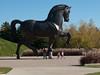 American Horse by Nina Akamu, a three piece Homage to Leonardo, bronze, 1998.<br /> <br /> DeVos Van Andel Piazza,<br /> Frederik Meijer Gardens and Sculpture Park,<br /> Grand Rapids, Michigan