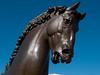 American Horse by Nina Akamu, a three piece Homage to Leonardo, bronze, 1998.<br /> <br /> Head of the 8-ft version of American Horse<br /> <br /> DeVos Van Andel Piazza,<br /> Frederik Meijer Gardens and Sculpture Park,<br /> Grand Rapids, Michigan