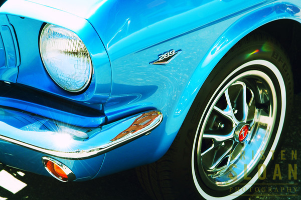 """Turquoise Pony""<br /> 36"" x 24"" giclee on stretched canvas, $550"