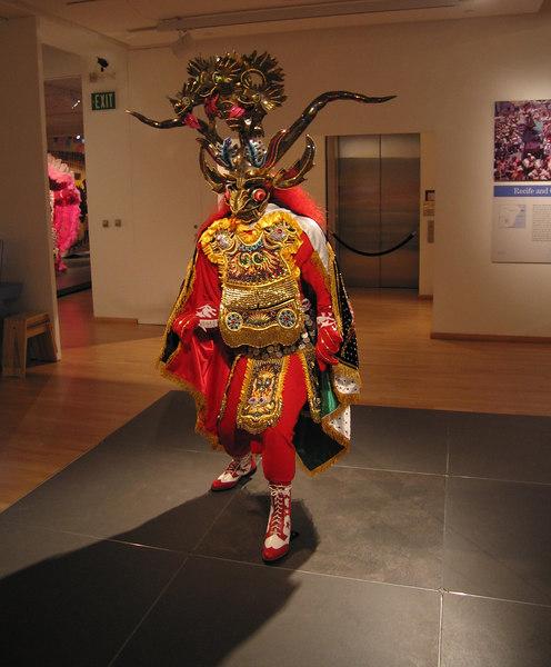 Carneval costume, Mingei International Museum, 11 Jun 2006