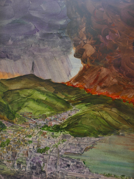 Will the rains come? 2029 fire season in Dunedin