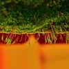 Moss Upside Down...