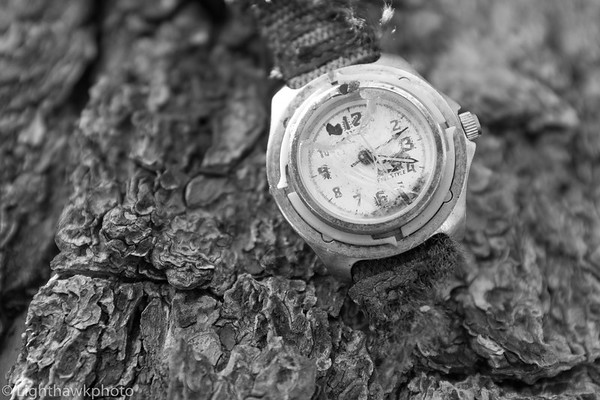 The Watch Tree series
