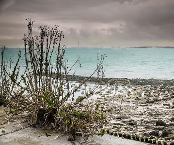 Desolate View