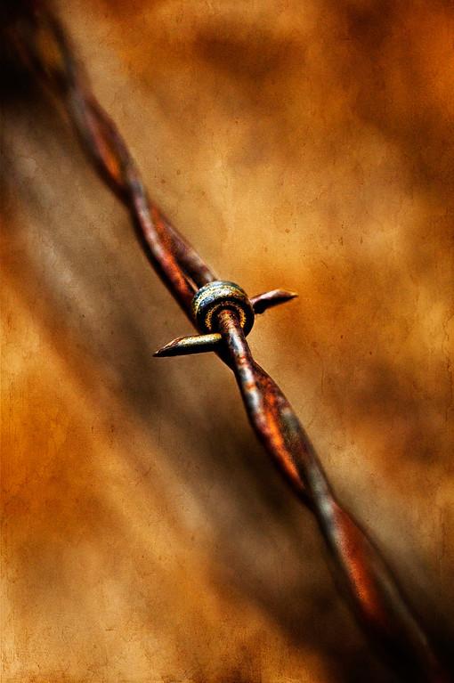 Rust As An Art Form