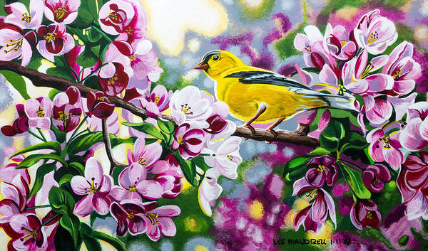 """Spring Gold"""