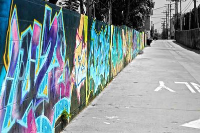 Color in the Streets, LA