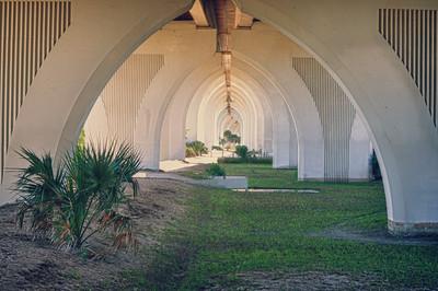 Under a bridge in Flagler County, Fl.