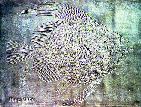 Bamber Hawes ~ John Dory, carved lead