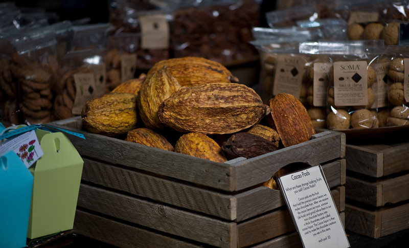 Cacao Pods in a crate
