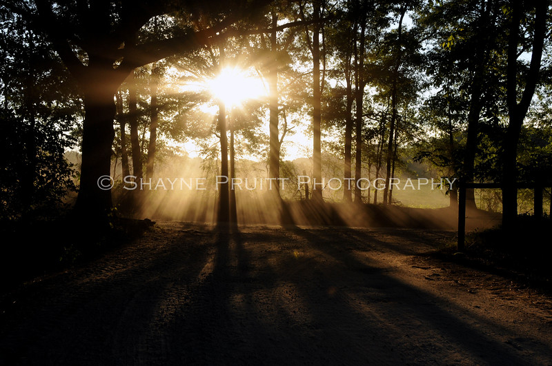 Dirt Road Sunrays