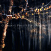 """Falling Snow with a Long Exposure. This image won best of show for the 2011 Dawson Arts Council's """"Motionality"""" show."""