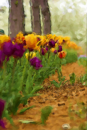 Tulips-watercolor 3