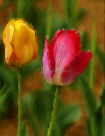 Tulips-watercolor 1
