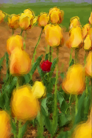 Tulips-watercolor 4