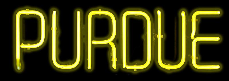 Neon Purdue