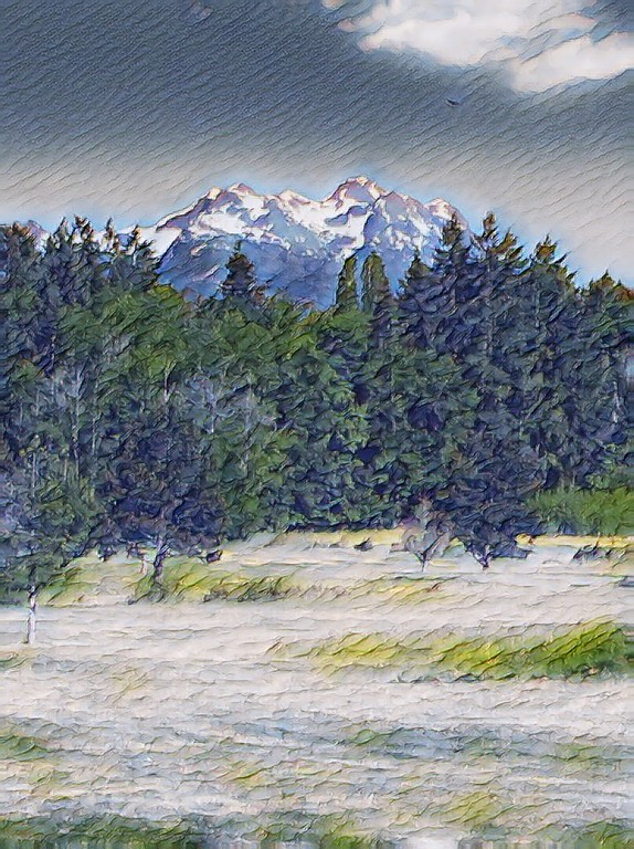 Mt.Arrowsmith