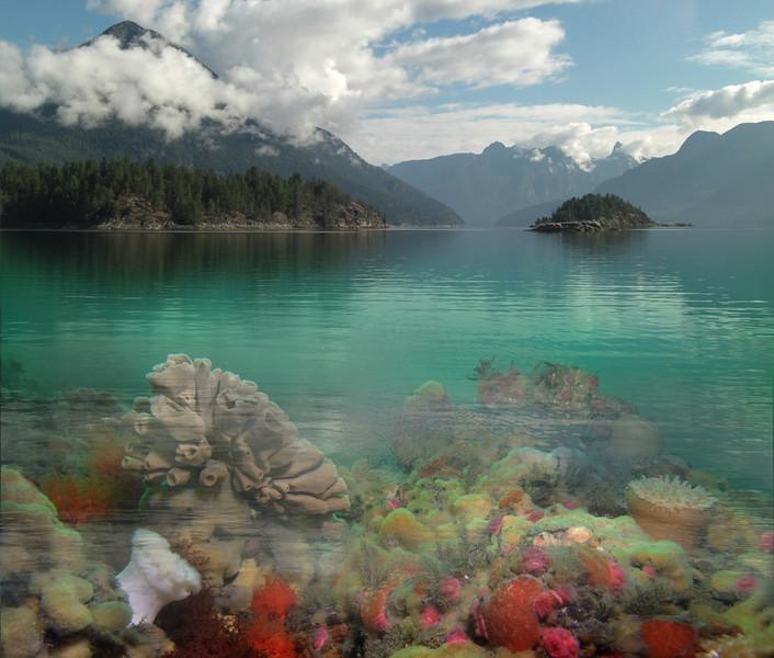 Slide for Salish Sea Ecosystem services presentation in Vancouver, Canada. Earth Economics.  October 14, 2011.  Version 1