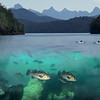 Slide for Salish Sea Ecosystem services presentation in Vancouver, Canada. Earth Economics.  October 14, 2011.  Version 3