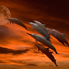 dolphin images composited on background with sunset and moon