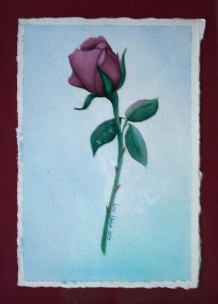 Rose (Watercolor)