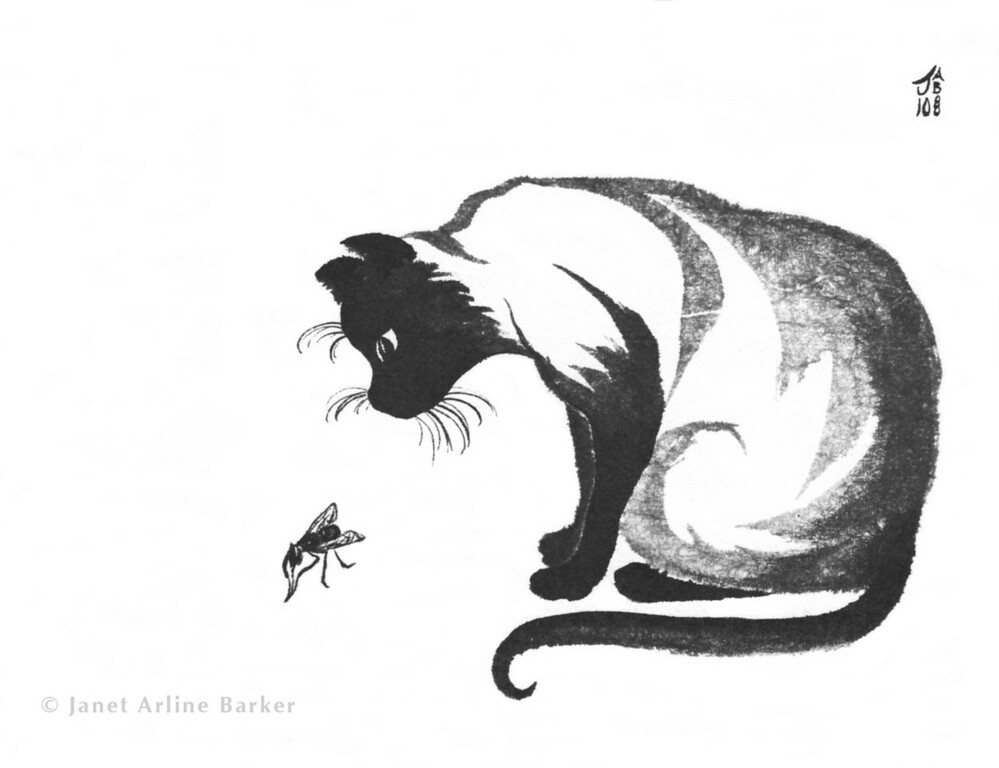 The Cat and the Fly