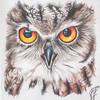 SRb1502_0569_Audrie_Art