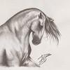 SRb1502_0573_Audrie_Art