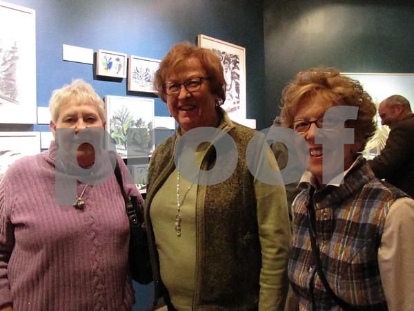 Elsa Vass, Mary Jensen, and Pam Sanders attended the artist talk and reception at the Blanden Memorial Art Museum.