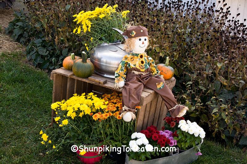 Autumn Display at Villebro Farm, Stephenson County, Illinois