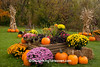 Autumn Display, Sauk County, Wisconsin