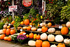 Pumpkin and Flower Display, Gays Mills, Wisconsin