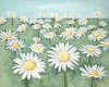 "Field of Flowers-Hibberd, 48""x60"" acrylic painting on loose canvas"
