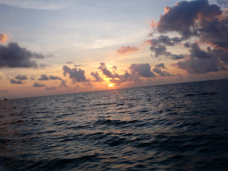 """sunset from the belizian water taxi<br /> BEACHES a photobook by patrick talley available at <br />  <a href=""""http://www.amazon.com/Beaches-photobook-patrick-Patrick-Talley/dp/1440451834/ref=sr_1_3?ie=UTF8&s=books&qid=1239042181&sr=1-3"""">http://www.amazon.com/Beaches-photobook-patrick-Patrick-Talley/dp/1440451834/ref=sr_1_3?ie=UTF8&s=books&qid=1239042181&sr=1-3</a>"""