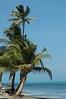 belize island  image from my photobook BEACHES found on amazon.com