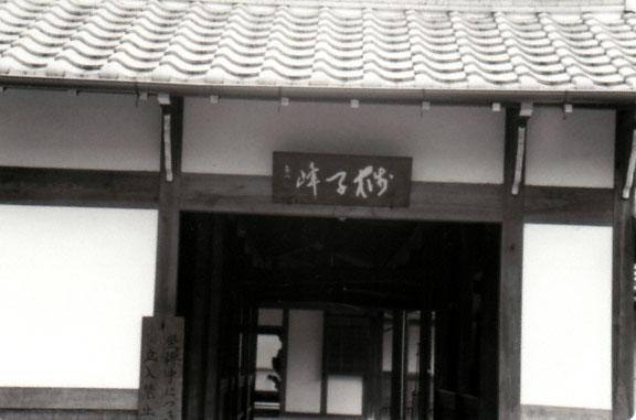 Nagoya <br /> Bessa R2   Trix 400