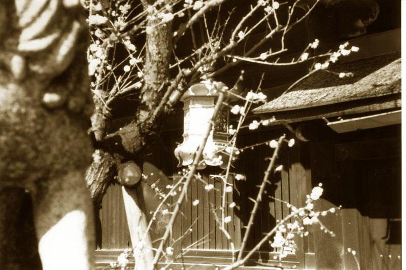 Kyoto 2004<br /> Bessa R2   Trix 400