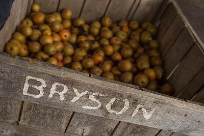 Bryson box of apples