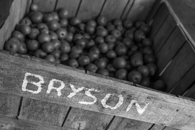 Bryson box of apples_BW