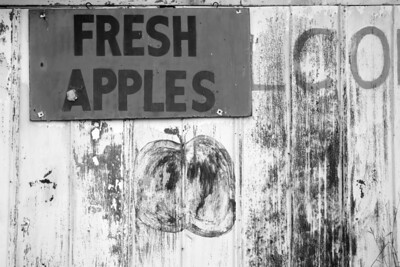 Fresh Apples_BW