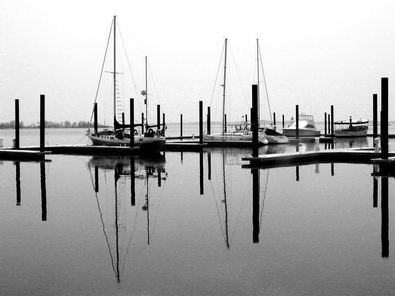 Still Harbor
