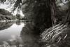 Blanco River