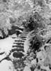 New Snow: Emerald Pools Trail